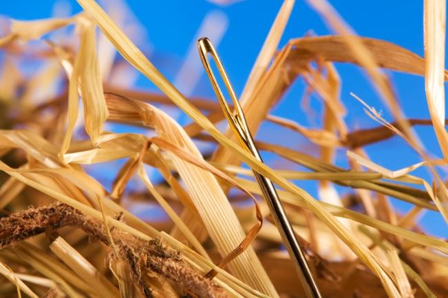 needle-in-haystack
